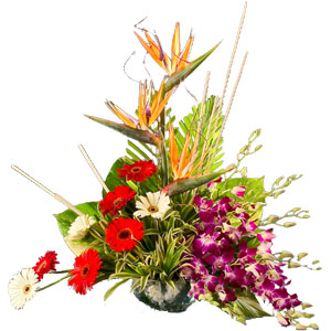 Special Arrangement of Exotic Flowers  to Nagpur.