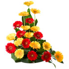 Nagpur Florist to deliver Flowers to Nagpur