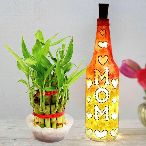 2 Tier Lucky Bamboo Plant with Handcrafted LED Lighting Bottle Lamp for Mom