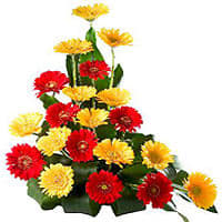 Charming Bouquet of Flashy 20 Gerberas