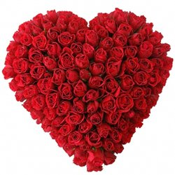 Beautiful Red Roses Arranged in Heart Shape