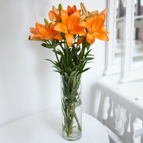 Expressive 6 Pcs. Mixed Lilies with Free Vase Gift
