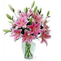 Festive Special Pink Lilies in Vase