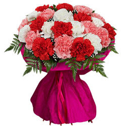 10 Mixed Carnations Tissue Wrapped Bouquet
