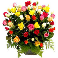 Mesmerizing Basket of Multicolored Roses