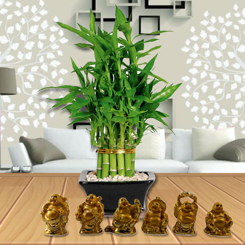 Elegant Moms Day Gift of 2 Tier Bamboo Plant N Laughing Buddha Set