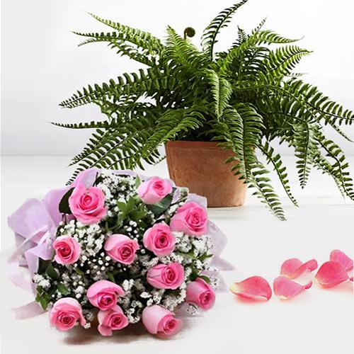 Beautiful Gift of Bostern Fern Plant N Pink Roses Arrangement