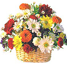 Kanpur Flowers Delivery