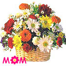 Nagpur Flowers Delivery