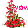Mothers Day Red Carnations Basket to Nagpur
